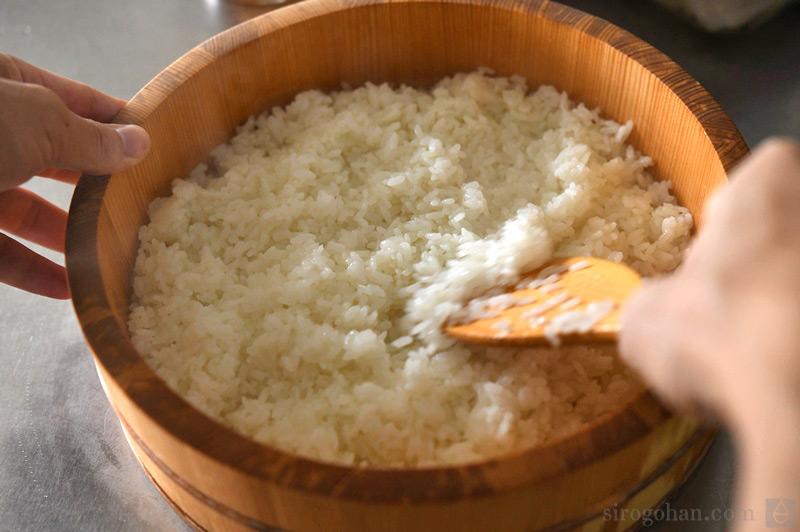 すし飯(酢飯)の写真
