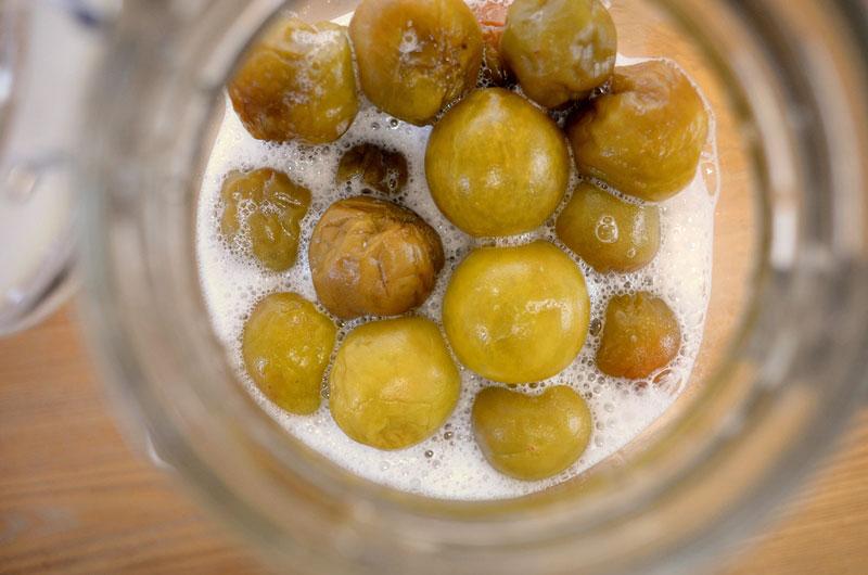 梅シロップの発酵止めや冷凍梅での検証の写真