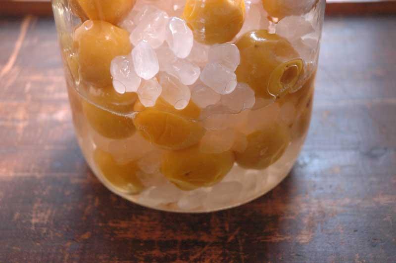 ほぼ完熟の梅シロップの写真